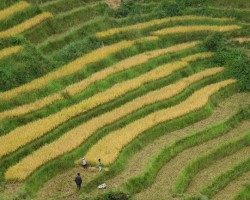 Sapa and around - September 16th to 20th 2016